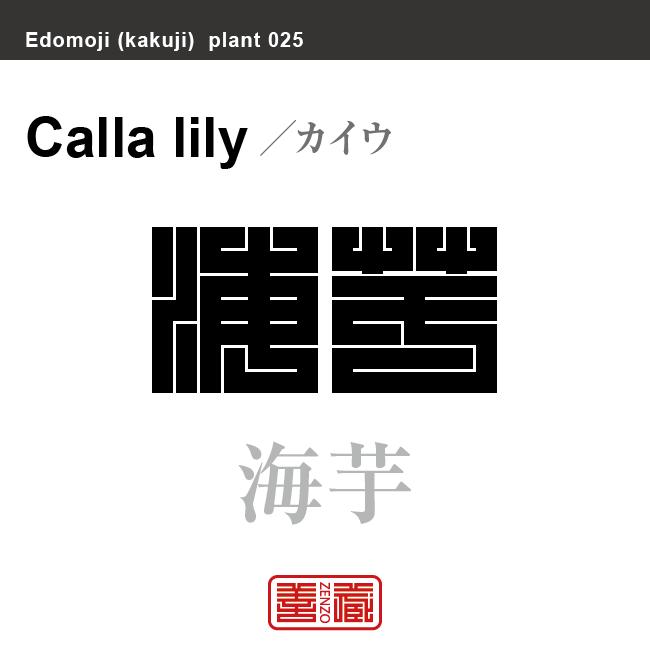 海芋 カイウ/カラー 花や植物の名前(漢字表記)を角字で表現してみました。該当する植物についても簡単に解説しています。
