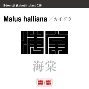 海棠 カイドウ 花や植物の名前(漢字表記)を角字で表現してみました。該当する植物についても簡単に解説しています。