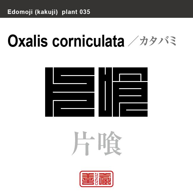 酢漿草 片喰 カタバミ 花や植物の名前(漢字表記)を角字で表現してみました。該当する植物についても簡単に解説しています。