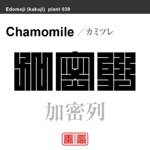 加密列 カミツレ 花や植物の名前(漢字表記)を角字で表現してみました。該当する植物についても簡単に解説しています。