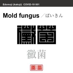 黴菌 ばいきん 新型コロナウイルス感染症関連用語(漢字表記)を角字で表現してみました。用語についても簡単に解説しています。