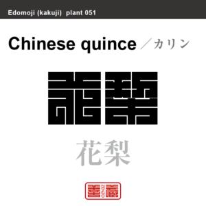 花梨 花櫚 カリン 花や植物の名前(漢字表記)を角字で表現してみました。該当する植物についても簡単に解説しています。