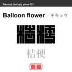 桔梗 キキョウ 花や植物の名前(漢字表記)を角字で表現してみました。該当する植物についても簡単に解説しています。