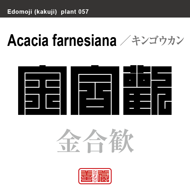 金合歓 キンゴウカン アカシア 花や植物の名前(漢字表記)を角字で表現してみました。該当する植物についても簡単に解説しています。