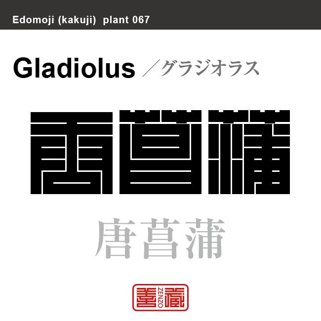 唐菖蒲 グラジオラス 花や植物の名前(漢字表記)を角字で表現してみました。該当する植物についても簡単に解説しています。