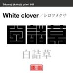 白詰草 シロツメクサ 花や植物の名前(漢字表記)を角字で表現してみました。該当する植物についても簡単に解説しています。