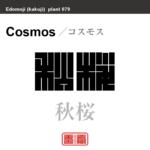 秋桜 コスモス 花や植物の名前(漢字表記)を角字で表現してみました。該当する植物についても簡単に解説しています。