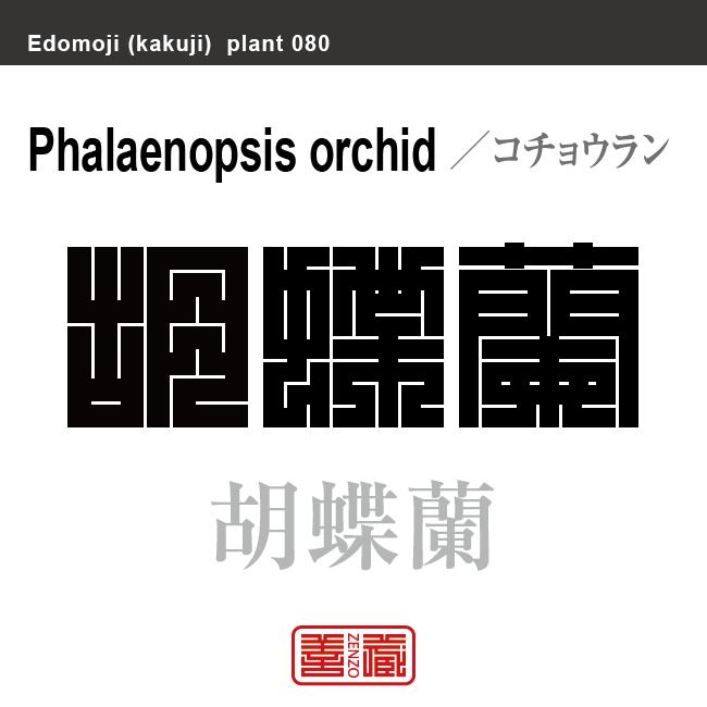 胡蝶蘭 コチョウラン 花や植物の名前(漢字表記)を角字で表現してみました。該当する植物についても簡単に解説しています。