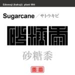 砂糖黍 サトウキビ 花や植物の名前(漢字表記)を角字で表現してみました。該当する植物についても簡単に解説しています。