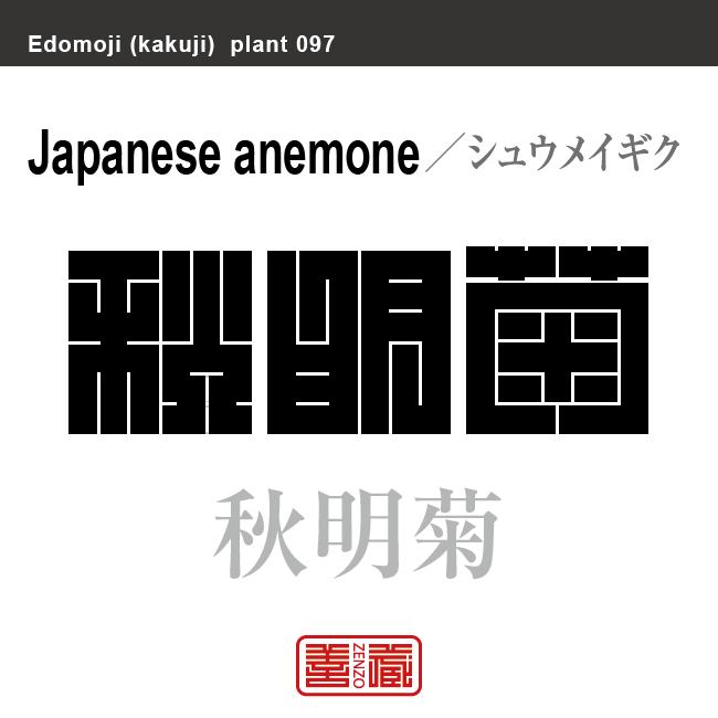 秋明菊 シュウメイギク 花や植物の名前(漢字表記)を角字で表現してみました。該当する植物についても簡単に解説しています。