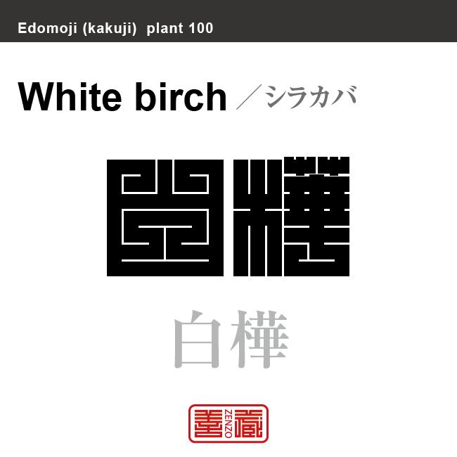 白樺 シラカバ シラカンバ 花や植物の名前(漢字表記)を角字で表現してみました。該当する植物についても簡単に解説しています。