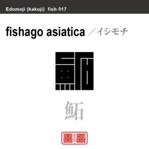 鮖 イシモチ 魚編(さかなへん)の漢字や、魚、海の生物、水の生物の名前(漢字表記)を角字で表現してみました。該当する生物についても簡単に解説しています。
